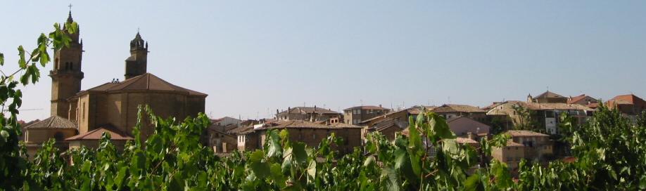 ELCIEGO – Vinos y Bodegas | Frank Gehry y Marques de Riscal | Turismo | Ciudad del Vino